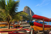 Sugarloaf boats palm tree red beach (praia vermelha), Rio de Jan — Stock Photo