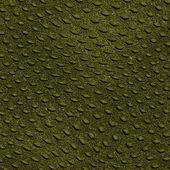 Reptile skin background — Stock Photo