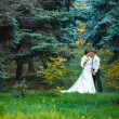 Bride and Groom at wedding Day walking Outdoors on spring nature. Bridal couple, Happy Newlywed woman and man embracing in green park. Loving wedding couple outdoor. — Стоковое фото