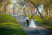Bride and groom walk in nature — Stock Photo