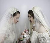 Twee jonge bruiden staren elkaar — Stockfoto