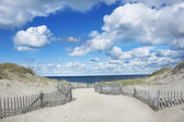 Race Point, Provincetown MA — Stock Photo