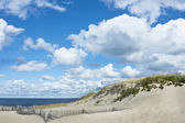 Beautiful Cape Cod beach — Stock Photo