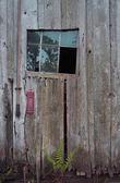 Barn with missing window — ストック写真