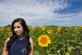 Young woman in sunflower field — Photo