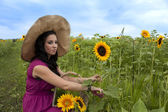 Beautiful woman cutting sunflower — Stockfoto