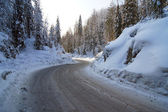 Naturaleza en invierno — Foto de Stock