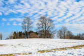 A scenic cold winter landscape with snow and trees — Stok fotoğraf