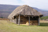 Hayloft from interwoven sticks and thatch — Stock Photo