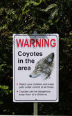 Warning, Coyotes in the Area in park , Canada — Foto Stock