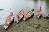 Four rowboats in False Greek,Vancouver , Canada — Stock fotografie