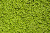 Green rough plaster on wall — Stock Photo