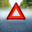 Stock Photo: Caution fog - warning triangle on a foggy road