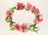 Dogrose. Decorative frame for celebration — 图库照片
