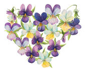 Heart of violets. — Stock Photo