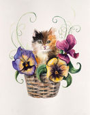 Kitten on the basket with flowers. Violet inside basket. — Foto Stock
