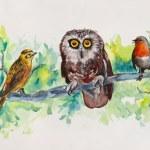 Birds liner. Wildlife banner. — Stock Photo #43595475