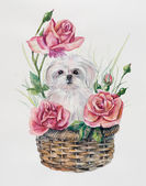 Puppy on the basket with flowers. — Stock Photo