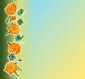 Decorazione con fiore di calendula — Foto Stock