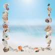 Background with seashells making a frame for any text. — Stock Photo #46150141
