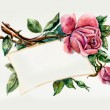 Roses brunch. Pattern from roses. Wedding drawings. — Stock Photo #48993615
