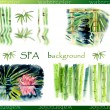 Illustration of spa stone with bamboo leaves and lilia. Set of cards for SPA salon. — Stock Photo