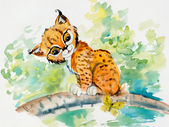 Lynx sits on a branch. Decoration with wildlife scene. — Stock Photo
