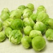 Brussels sprouts — Stock fotografie #38385493