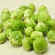 图库照片: Brussels sprouts