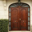 Wooden door — Stock Photo #38386041