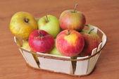Korb mit verschiedenen Arten von Äpfeln — Stockfoto