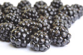 Blackberrys fruit — Stock Photo
