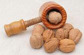 Wallnuts — Stockfoto
