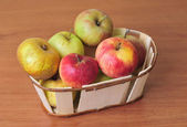 Basket with several kinds of apples — Stock Photo