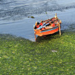 Boat in water — Stock Photo
