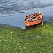 Boat in water — Stock Photo #38501319