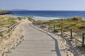 Ландшафт южных пляжей — Стоковое фото