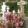 Stock Photo: Old Christian cemetery