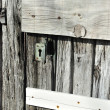 Very old wooden door — Stock Photo