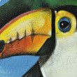 Toucan bird colored graffiti detail — Stock Photo