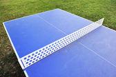 Professional tennis table — Stok fotoğraf