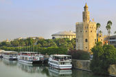 Gold tower monument and Guadalquivir river — Stock Photo