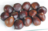 Selection of chestnut — Stock Photo