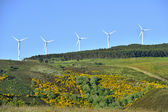 Windmills park in mountain — Stock Photo