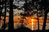 Orange sunset in the beach — Stock Photo