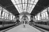 Trenes en la plataforma — Foto de Stock
