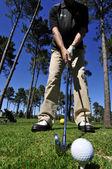 Golfçü iskambil — Stok fotoğraf
