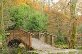 Wooden bridge in the  park — Photo