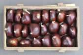 Selection of chestnut — Stockfoto