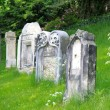 Old gravestone — Stock Photo #40543065